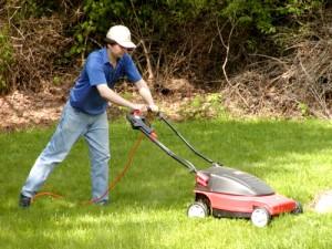 Садовая техника, которая способна украсить нашу жизнь