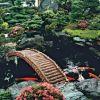 Строим пруд в своем саду