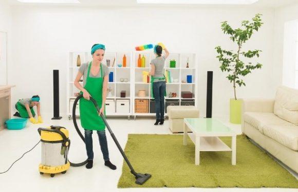 Профессиональная уборка квартир – клиниговая компания или домработница