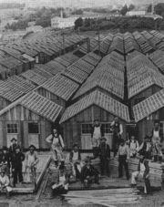 ХХ век