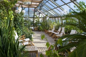 Зимний сад: комфорт за стеклом