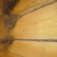 Конопатка деревянной бани
